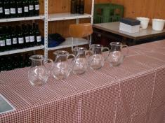 Košt vín 2010